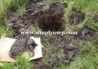 KUBUR : ROKI dikuburkan di belakang rumah saja. Foto Asep Haryono