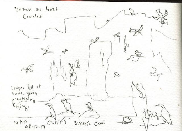 Nature S Sketchbook By Marjolein Bastin Address Book
