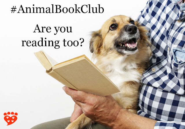 A man reads a book with a happy little dog on his lap.The book of the month is Dog Sense by John Bradshaw