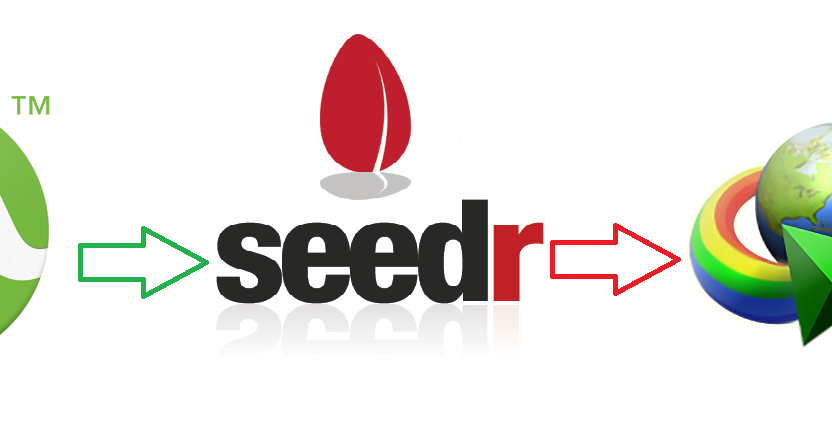 to torrents download how seeds directly no