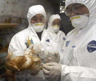 """Nuevo virus """"altamente tóxico""""  en Vietnam"""