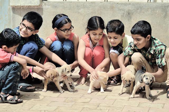 children playing puppy