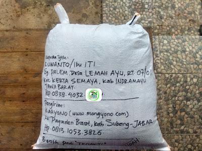 Benih pesanan RUWANTO Indramayu, Jabar.   (Setelah Packing)