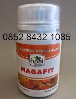 Obat Maag Alami Magafit Hpai Asli Original Herbal Tradisional