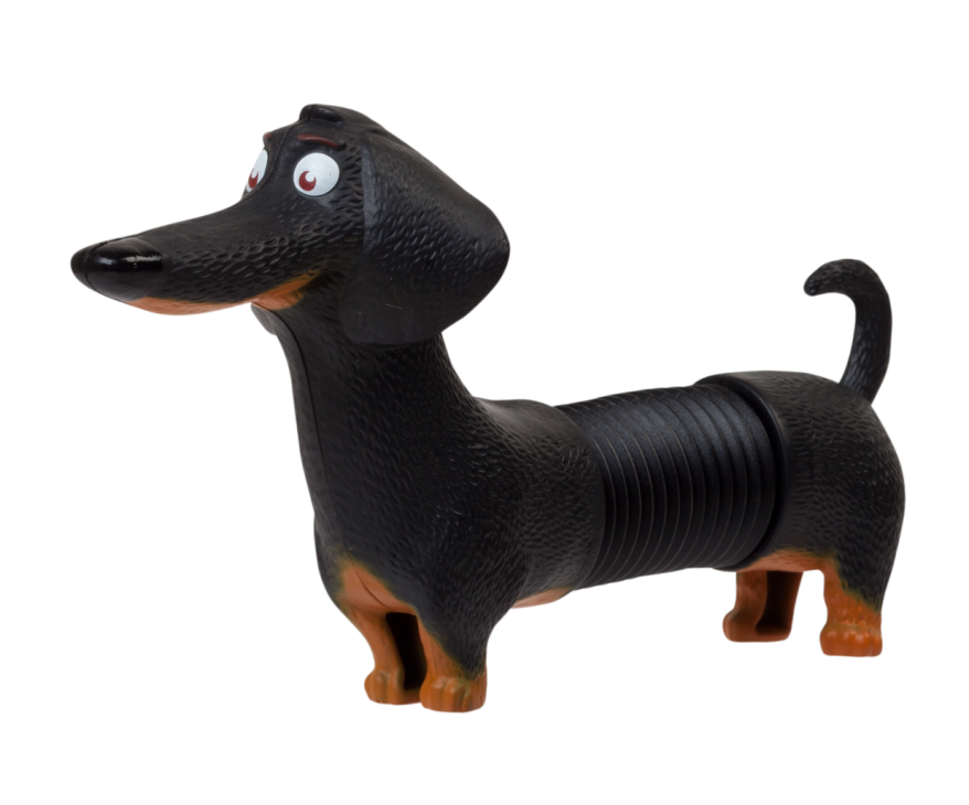 buddy a long black dachshund who likes getting massage from a kitchen mixer pull and release to stretch his body