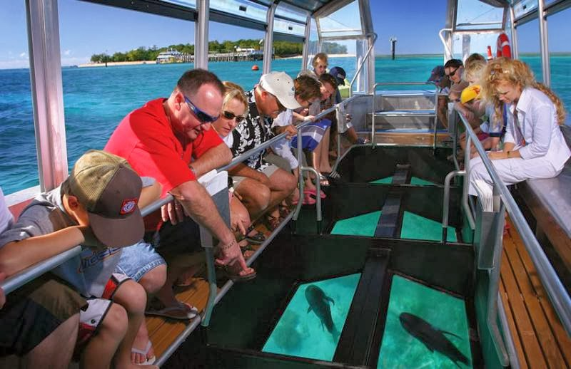 Glass Bottom Boat Tours in Philippines