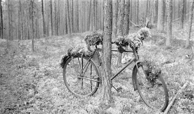 A parked bicycle, camouflaged. Ontrosenvaara, August 17, 1941.
