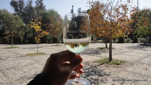 Degustação de vinho branco - Concha y Toro