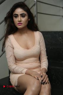 Telugu Actress Model Sony Charishta Stills in Short Dress at Rapture 2017 Grand Logo Launch  0077.JPG