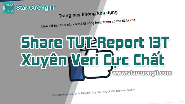 Share TUT Report 13T Xuyên Veri Cực Chất
