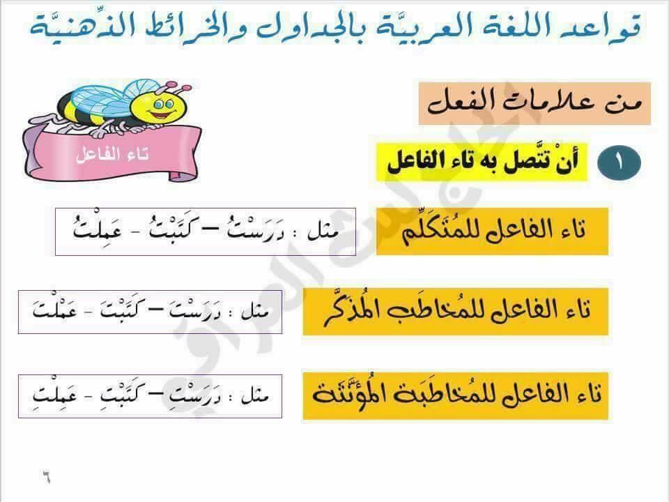 قواعد اللغة العربية بالجداول والخرائط الذهنية 5