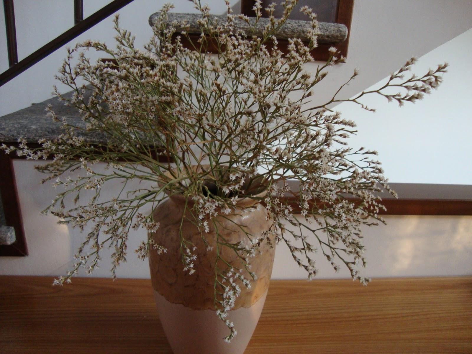 Un piccolo giardino in citt luglio 2013 - Rami secchi decorativi dove comprarli ...