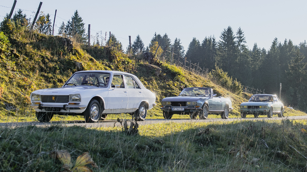 Contacto Express Peugeot 504 Gl 504 Cabriolet V6 Y 504 Coupe V6 Ti