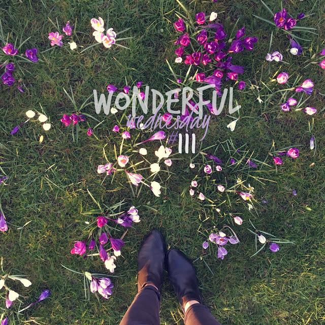 Wonderful Wednesday #111