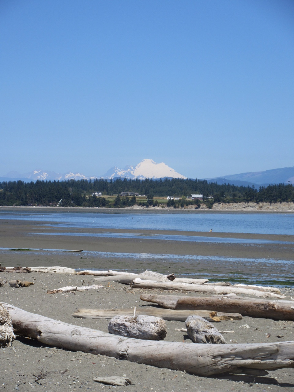 Camano Island State Park Weather Fagin S Weather World Hike Washington Fagin S Hike Of The Week