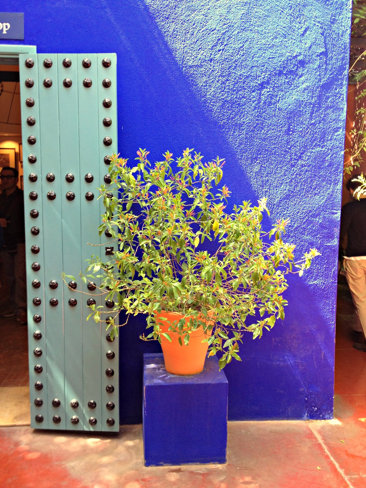 Salon 16m Bleu Majorelle Forum Decoration Interieure