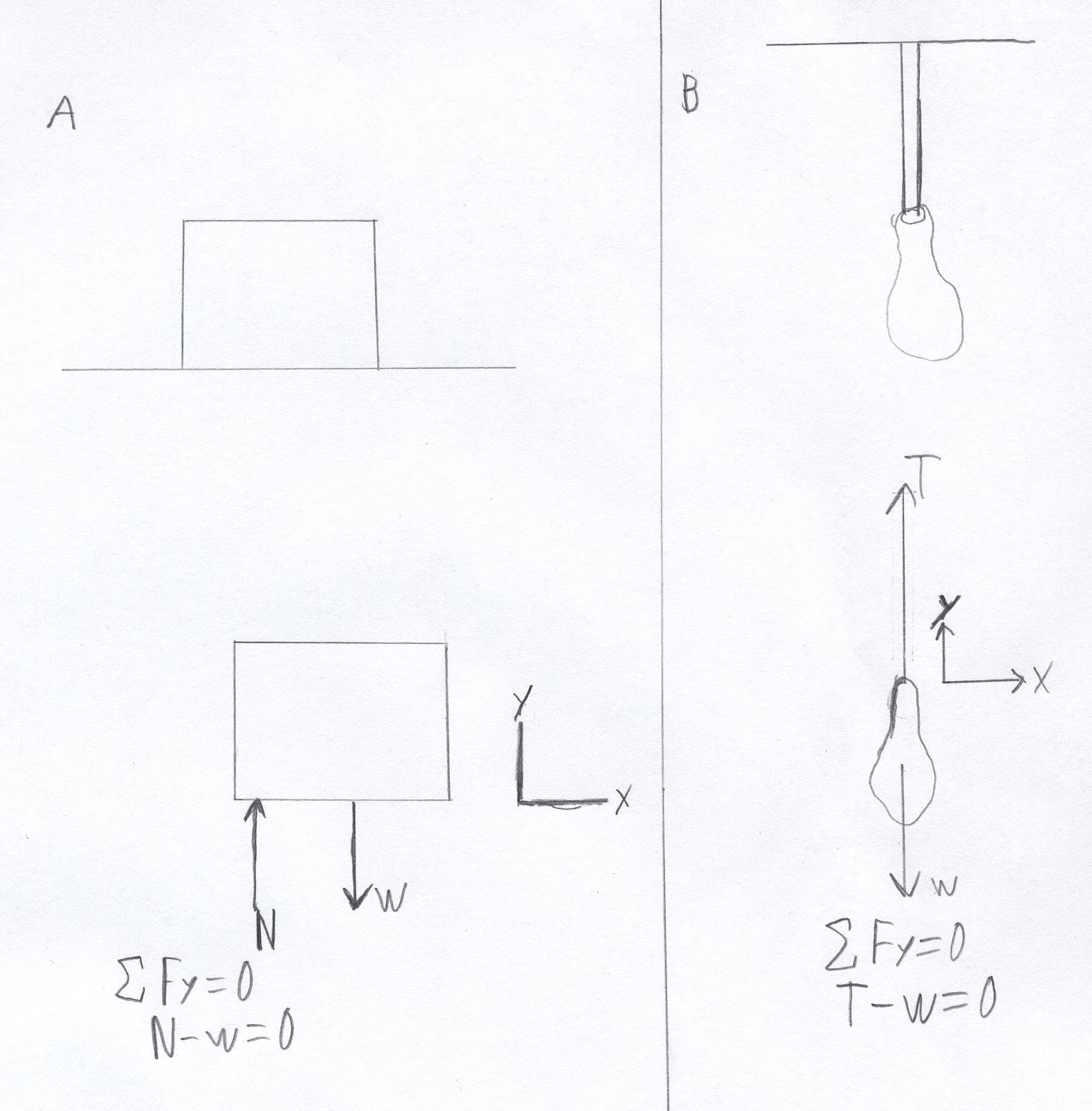 Newtonian Mechanics Equilibrium 1
