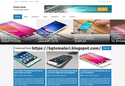 Palki Grid Blogger