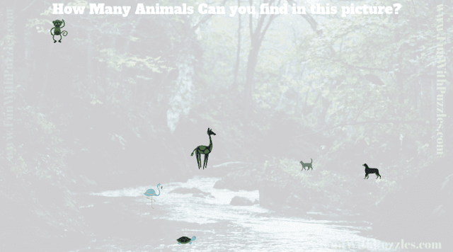 This is Answer picture of hidden animals puzzle