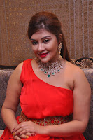 Payal Ghosh Looks Stunning in Red Half Shoulder Gown 009.JPG