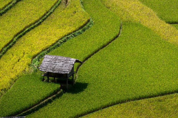 Travel Tips: 9 tips for backpacking Vietnam