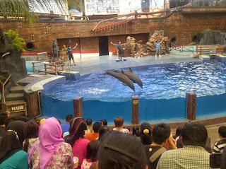 Atraksi lumba-lumba di TAMAN SAFARI INDONESIA 2