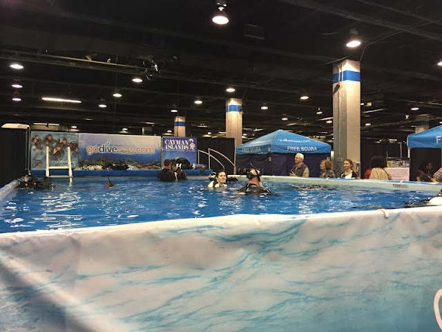 Dive pool at The Chicago Travel and Adventure Show