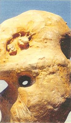 Έκανε...φτερά το αρχαιότερο γλυπτό του κόσμου από το Μουσείο Πετραλώνων Χαλκιδικής.