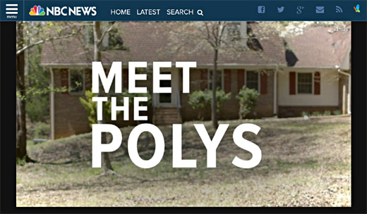 Meet the Polys screenshot