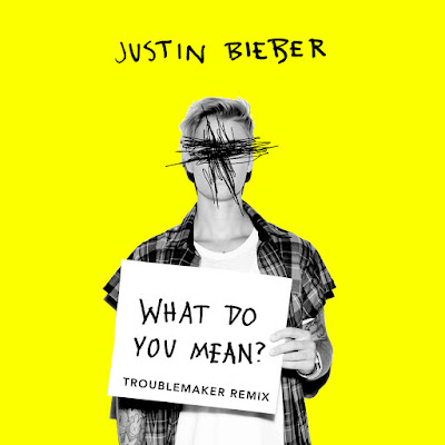 DJ Toublemaker Justin Bieber What Do You Mean Remix