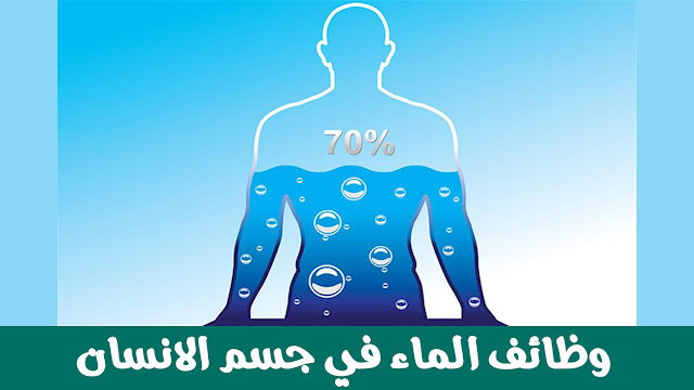 وظائف الماء في جسم الانسان