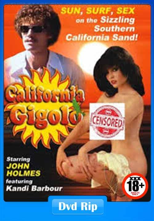 [18+] California Gigolo 1979 Classic X DVDRip 480p x264 Poster