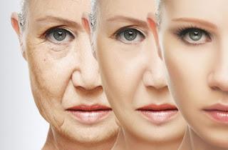 minyak argan untuk penuaan wajah