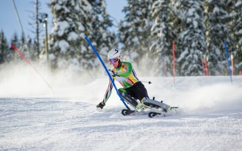 Wallpaper: Winter Sports - Ski
