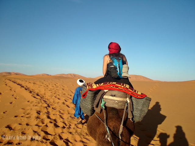 Paseo en camello por el Sahara