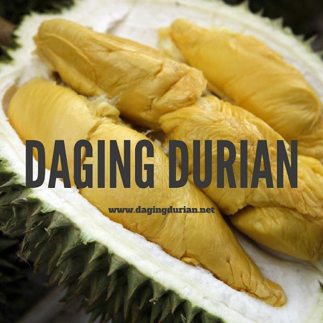 distributor-daging-durian-medan-legit-di-cimahi