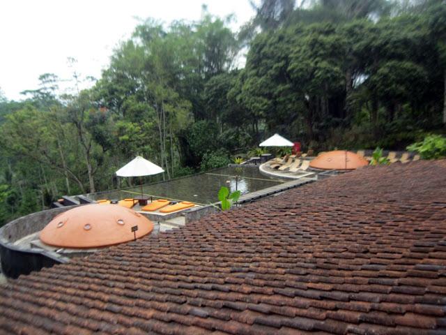 rooftop mesastila