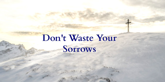 Let God Use Your Sorrows (Romans 8:28)