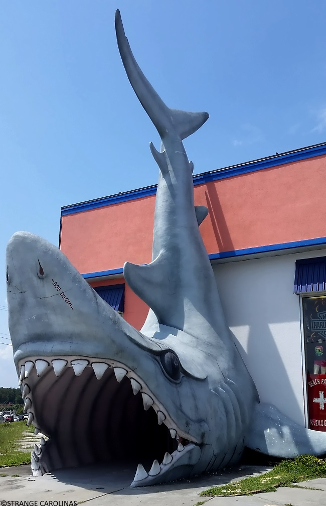 Like The Murrells Inlet Jaws Resort Wear Sharks This Large Concrete Shark At Entrance Of North Myrtle Beach S Pacific Beachwear Was Created By Bob