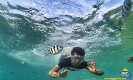 snorkeling di bawah permukaan taman nasional laut kepulauan seribu