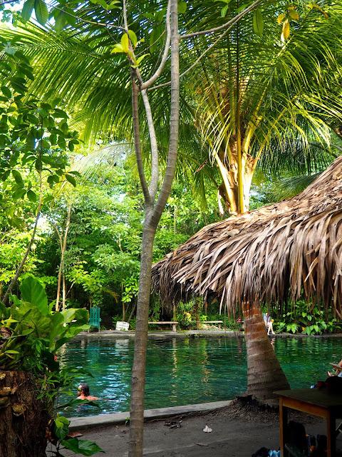 Ojo de Agua mineral springs, Ometepe Island, Nicaragua