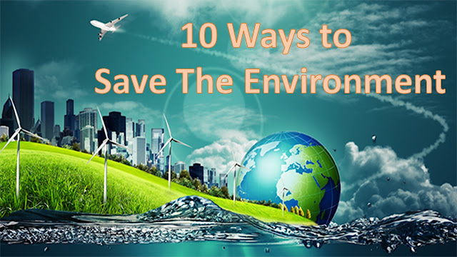 10 Ways to Save the Environment