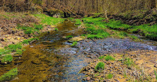 A hiking trail fords a wide section of Honey Creek
