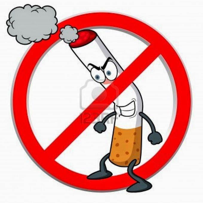 Inilah 4 Organ Yang Rusak Akibat Merokok