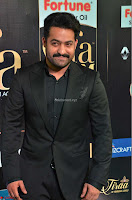 NTR and others Celebs at  at IIFA Utsavam Awards 2017  Day 2   Part 3 ~  18.JPG
