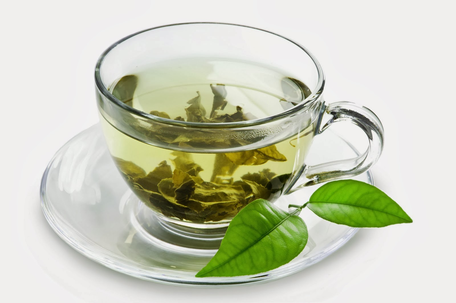 Green Tea - The Natural Bacterial Killer