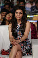Kyra Dutta in a Deep neck Small Dress at Shamanthakamani pre release function ~  Exclusive 086.JPG