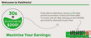 Cara Mendapatkan Penghasilan Dollar di Paidverts
