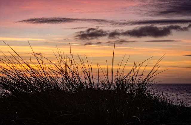 Photo of colourful sky through grasses at Maryport