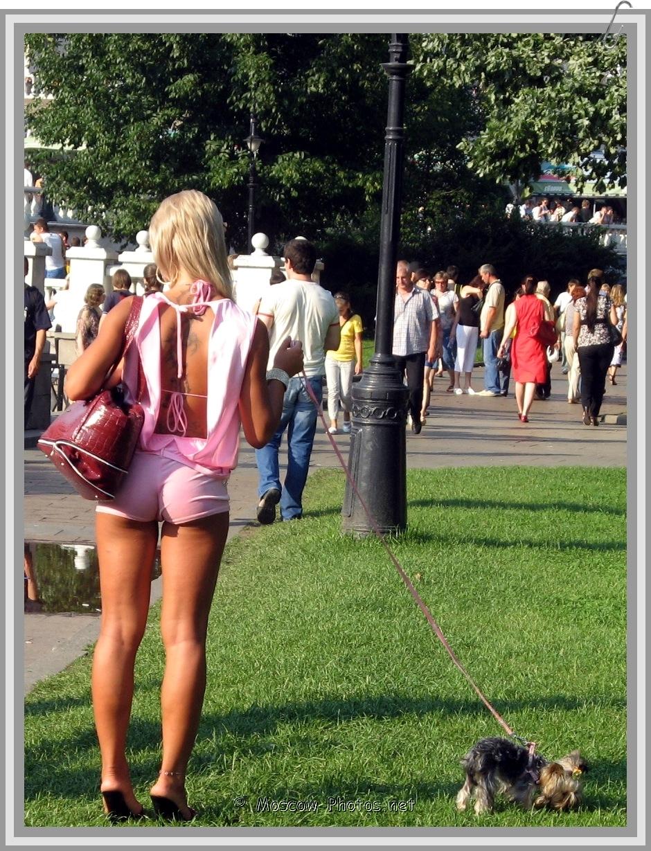 A pleasant summer walk with a loyal friend